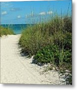 Path To Pass -a- Grille Metal Print