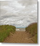 Path To The Beach 12058 Metal Print