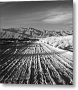 Path To The Point. Metal Print