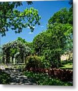 Path To The Roses Metal Print
