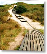 Path To The Sea Metal Print