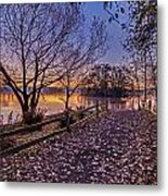 Path To The Serene Metal Print