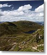 Path To The Top Metal Print