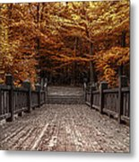 Path To The Wild Wood Metal Print