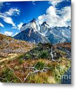 Path To Torres Del Paine Metal Print