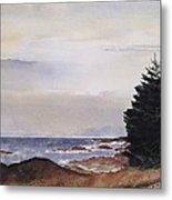 Path To Ucluelet In Winter   Victoria Island  Bc Watercolor  Metal Print