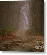 Path To Wolf Den  Metal Print