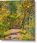 Pathway Along The Ohio And Erie Canal  Metal Print