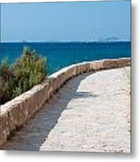 Pathway By The Sea Metal Print