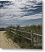 Pathway To The Sea Metal Print by Tom Gari Gallery-Three-Photography