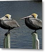 Patient Pair Metal Print