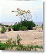 Patterned Dune With Oats Metal Print