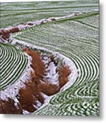 Patterns 2 Metal Print by Don Hall