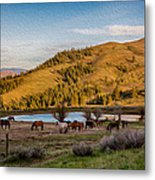 Patterson Mountain Afternoon View Metal Print