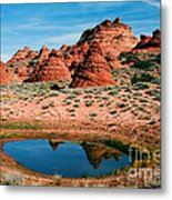 Paw Hole Reflections Metal Print by Mike  Dawson