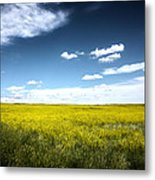 Pawnee Grasslands Metal Print