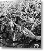Peace On The River Metal Print