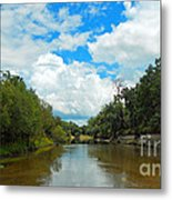 Peace River 4 Metal Print