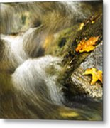 Peaceful Creek Metal Print