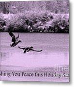 Peaceful Holidays Card - Winter Ducks Metal Print
