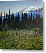 Peaceful Mountain Flowers Metal Print