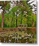 Peaceful Pond Metal Print