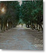 Peaceful Resting Place Metal Print