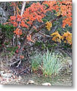 Peaceful Retreat Lost Maples Texas Hill Country Metal Print