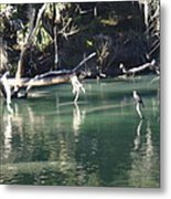 Peaceful River Metal Print
