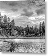 Peaceful Times 2 Black And White Metal Print