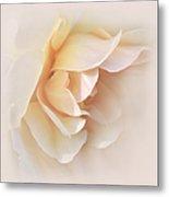Peach Rose Tranquillity Metal Print