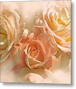 Peach Roses In The Mist Metal Print