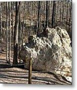 Peach Tree Rock-6 Metal Print