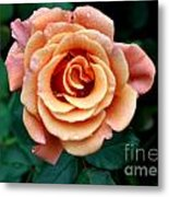Peachesncream Metal Print