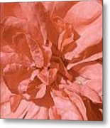 Peachy Pink Jasper Rose Metal Print