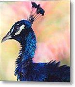 Peacock And Pink Metal Print by DerekTXFactor Creative
