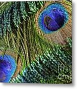 Peacock Eye And Sword Metal Print