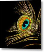Peacock Feathers 7 Metal Print
