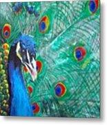 Peacock Love Metal Print
