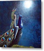 Peacock Princess II By Shawna Erback Metal Print