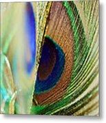 Peacocks Dance The Samba Metal Print