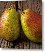 Pear Still Life Metal Print