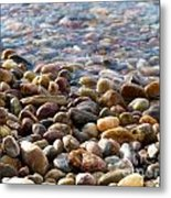 Pebbles On The Shore Metal Print