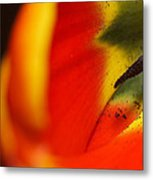 Peering Into The Heart Of A Tulip Metal Print