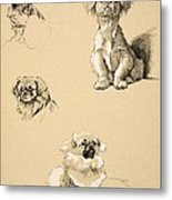 Pekes, 1930, Illustrations Metal Print