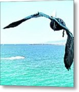 Pelican And Jetski Metal Print by Brian D Meredith