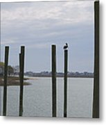 Pelican And Pilings On The Inlet Metal Print