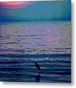 Pelican At Sunrise - Outer Banks Metal Print