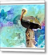 Pelican Colours Metal Print