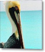 Pelican Profile And Water Metal Print